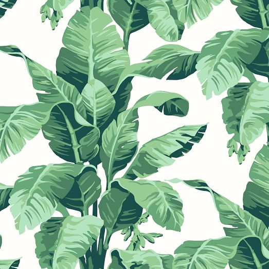 Wallshoppe Tropical Leaf Print Removable Wallpaper Download transparent tropical leaves png for free on pngkey.com. wallshoppe tropical leaf print removable wallpaper