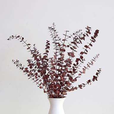Dried Eucalyptus Bundle - Red