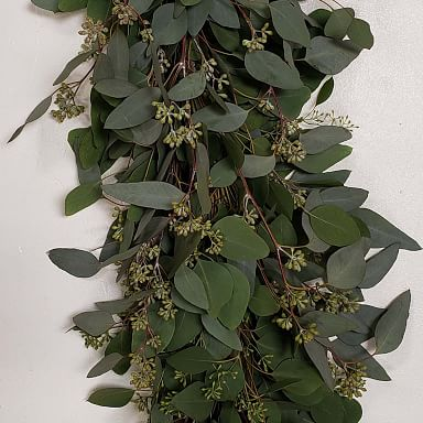 Fresh Eucalyptus Fall Garland