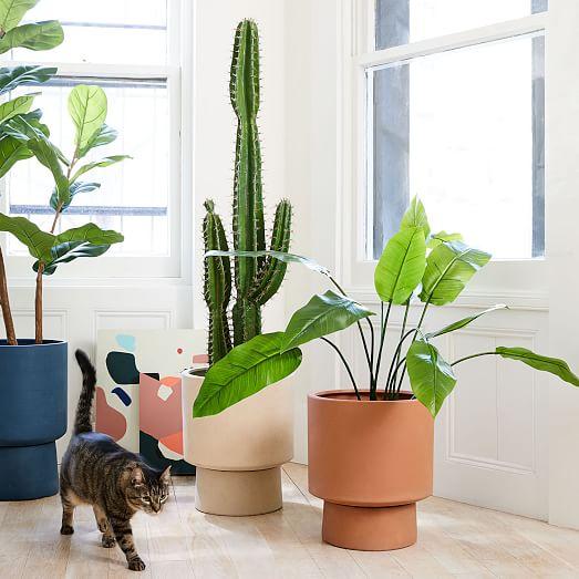 Faux Potted Cactus Plant